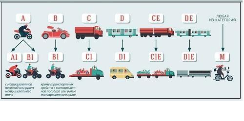 Какие есть категории водительских прав